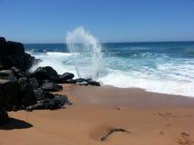 Ocean fala Zdjęcie Royalty Free