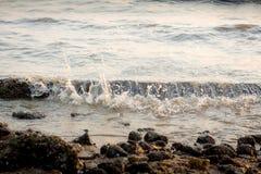 Ocean fala przeciw skałom Denna fala uderzeniowej piana na otoczaka kamienia plaży Fotografia Stock