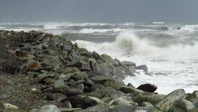 Ocean fala rozbija na brzeg zbiory