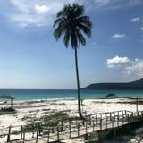 Ocean, fale, palmy, zmierzch palmy Kambodża zdjęcie stock