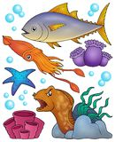 Ocean fauna topic set 2. Eps10 vector illustration Stock Photography