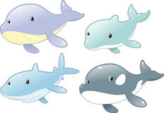 Ocean Fish Family Stock Photography