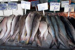 Ocean Fish at Market Royalty Free Stock Photography