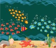 Ocean fish. Ocean Underwater World Stock Images