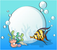 An ocean with a fish and seashells Royalty Free Stock Image