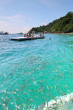 Ocean Fishes at Coral Beach. Blue ocean fishes at Payar Island, Malaysia Stock Photography