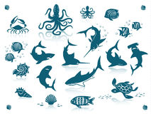 Ocean fishes icon set. Sea life and fishes icon set.  against a white background with reflections Royalty Free Stock Photo