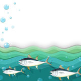 An ocean with fishes Royalty Free Stock Image