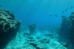 Ocean floor reef sculpted by swell Pacific ocean Stock Images
