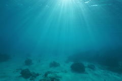 Ocean floor with sunlight through water surface. Natural scene underwater, Pacific ocean, French Polynesia Stock Photo
