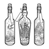 Ocean flora and fauna in bottles. Royalty Free Stock Image