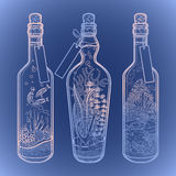 Ocean flora and fauna in bottles. Stock Image