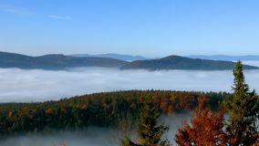 Ocean of fog movement under the camera. Great overcast over Alsace. Panoramic view from top of the mountain. stock footage
