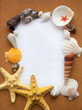 Ocean frame. With seashells and starfishes stock photo