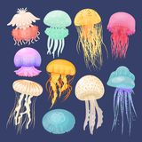 Ocean jellyfish bright set on dark blue. Beautiful marine coelenterate with a jelly like bell, transparent and colorful sea life. Vector flat style cartoon vector illustration