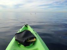 Ocean kayaking. Kayaking on calm ocean waters Stock Images