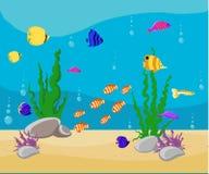 Ocean kreskówki podwodny świat z ryba, rośliny, wyspy akwarium ryba set Obraz Stock