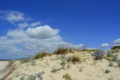 Sunny Beach with Sand Dunes and Blue Sky. Ocean. Ocean landscape with beach sea view, sand dune and grass, blue sky with clouds stock image