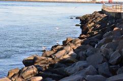 Ocean landscape Stock Images
