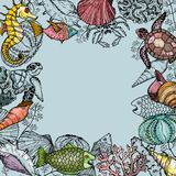 Ocean life background with shells, fish, corals, and turtle. Sea life organisms. Hand Drawn vector illustration Stock Image