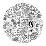 Ocean life in the circle shape. Ocean flora and fauna in the circle shape . Fish, seashells, seaweed and corals drawn in line art style on white background Stock Images