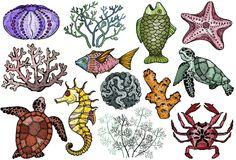 Ocean life organisms, shells, fish, corals, sea horse, crab and turtle. Hand Drawn vector illustration Stock Photo