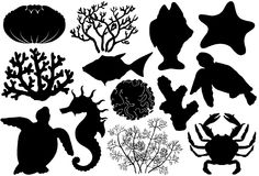 Ocean life organisms silhouettes, shells, fish, corals, sea horse, crab and turtle. Ocean life organisms silhouettes, shells, fish, corals, sea horse, crab and Royalty Free Stock Photos