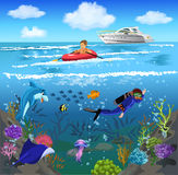 Ocean life and underwater world. Vector illustration of cartoon ocean and marine life Royalty Free Stock Photos