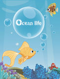 Ocean life Royalty Free Stock Photography