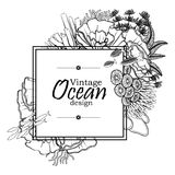 Ocean line art design. Vintage graphic card with ocean flora and fauna with square frame.  Fish, seashells, seaweed and corals drawn in line art style on white Stock Photos