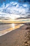 Ocean linia brzegowa Zdjęcie Royalty Free