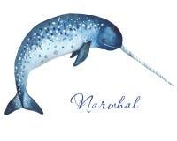 Ocean mammals watercolor. royalty free illustration