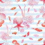 Ocean natura z ryba, czerwieni gwiazda, skorupy, seahorse, alga szew Obrazy Royalty Free