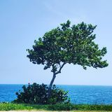 Ocean nature view. Sea royalty free stock image