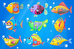 An ocean with nine colorful fishes Royalty Free Stock Photography