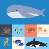 Ocean, ocean collection of fish. Flat  illustration Royalty Free Stock Photos