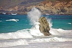 ocean Pacific zdjęcie royalty free