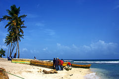 Ocean  palm and tree in  republica dominicana Royalty Free Stock Photos