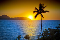 Ocean Palm Tree Tropical Sunset Sky. A tropical ocean sunset, palm tree taken from Tokoriki Island Fiji. Yanuya Island is in the background