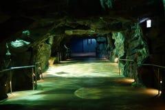 Ocean park aquarium interior. Hong Kong Ocean park aquarium interior royalty free stock photo