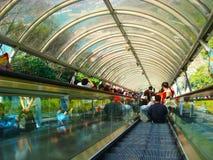 Ocean Park. The Ocean Park in hongkong Stock Photos