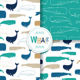 Ocean Patterns With Sperm Whale / Cachalot On White Background. Royalty Free Stock Photography