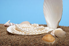 Ocean Pearls Stock Images