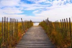 Ocean plaża Obrazy Royalty Free