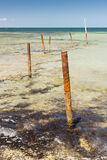 Ocean Poles Stock Images