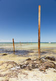 Ocean Poles Royalty Free Stock Photos