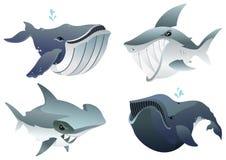 Ocean Predators Set Royalty Free Stock Photo