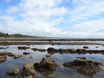 Ocean Puddles formed in the lava Costa Rcia. Tides out in Playa Esterillos,Costa Rica Puddles form, where little fish gather Stock Photo