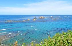Ocean Reef. This image taken from the Simpson Reef Overlook on the Southern Oregon coast near Cape Arago state park. The reef rocks are habitat for a large Royalty Free Stock Photography
