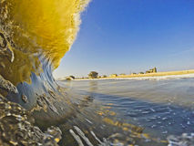 Ocean Refraction. A backlit curling wave refracts the reflection of the shoreline Stock Image